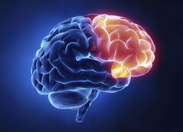 epileptologia