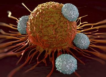 Onkologia Wilanów